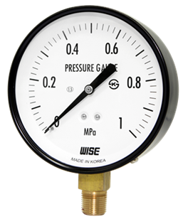 Đồng hồ đo áp suất bằng thép P110 Wise Control